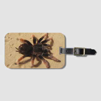 Spider Luggage Tag