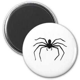 Spider Fridge Magnets