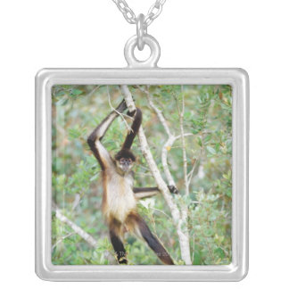 Spider monkey at the Belize Zoo Silver Plated Necklace