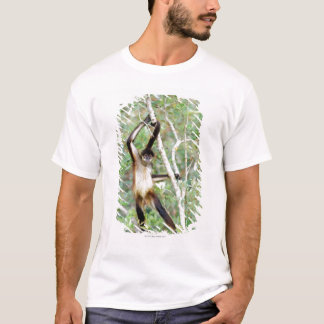 Spider monkey at the Belize Zoo T-Shirt