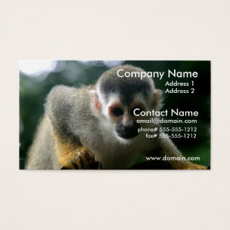 Spider Monkey Business Card