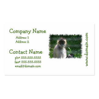 Spider Monkey  Business Cards