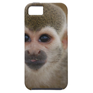 Spider Monkey Case For The iPhone 5