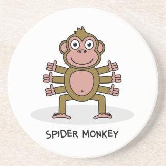 Spider Monkey Coaster