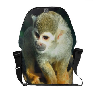 Spider Monkey Courier Bag