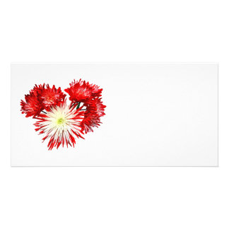 Spider Mum Heart Custom Photo Card