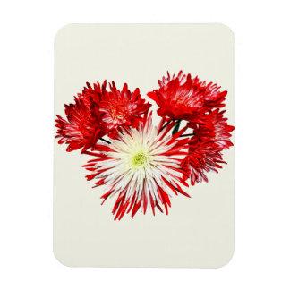 Spider Mum Heart Vinyl Magnets