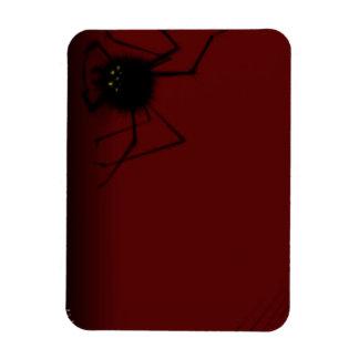 Spider on Red Magnet