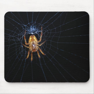 Spider on spiderweb mouse mat