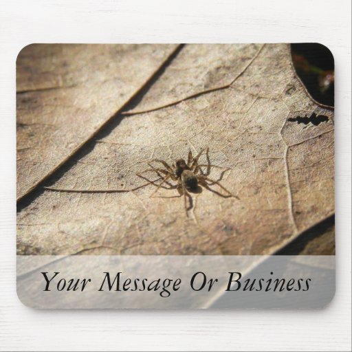 Spider on Weathered Leaf Mouse Pad