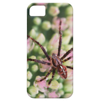 Spider Phone and Tablet Case