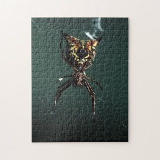 spider jigsaw puzzles