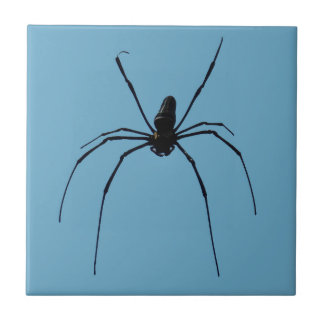 "Spider Small (4.25"" x 4.25"") Ceramic Photo Tile"