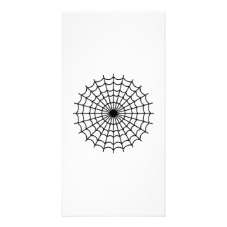 Spider spiderweb photo greeting card