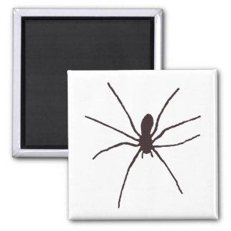 Spider Square Magnet