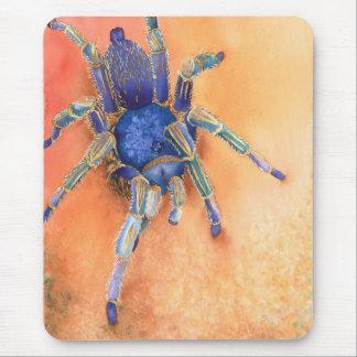 Spider, tarantula mouse mat