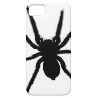 Spider vector design iPhone 5 covers