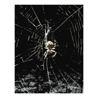 Spider Web at Midnight 21.5 Cm X 28 Cm Flyer