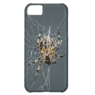 Spider & Web Insect iPhone Case Case For iPhone 5C
