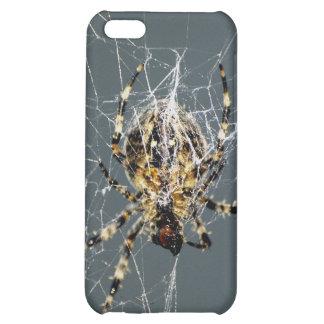 Spider & Web iPhone Cases iPhone 5C Cases