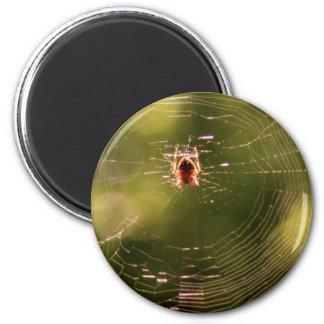 Spider Web 6 Cm Round Magnet