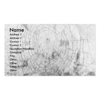 Spider web pack of standard business cards