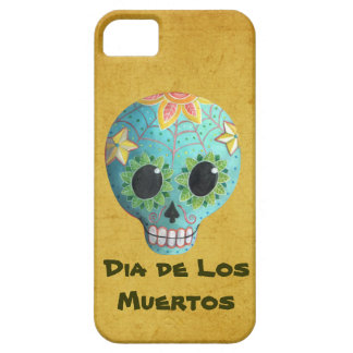 Spider Web Sugar Skull iPhone 5 Covers