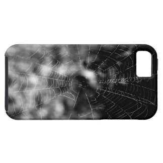 Spider webs make compelling shapes. iPhone 5 cover