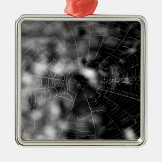 Spider webs make compelling shapes. christmas ornament