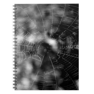 Spider webs make compelling shapes. notebooks