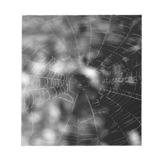 Spider webs make compelling shapes. notepad