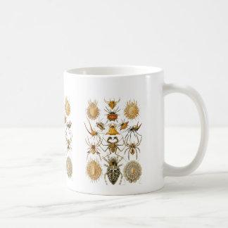 Spiders Basic White Mug
