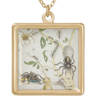 Spiders: Mygole, plate 18 from 'Over de Voorteelin Gold Plated Necklace