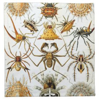 Spiders Napkin