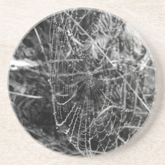 Spiders Web Coaster