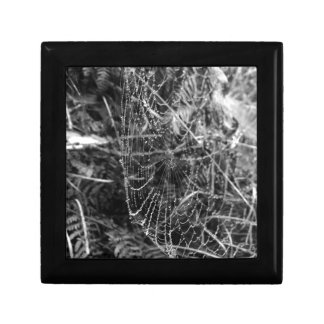Spiders Web Gift Box
