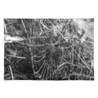 Spiders Web Placemat