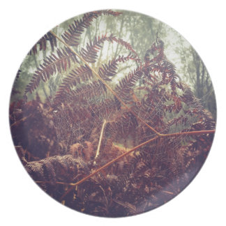 Spiders web plate