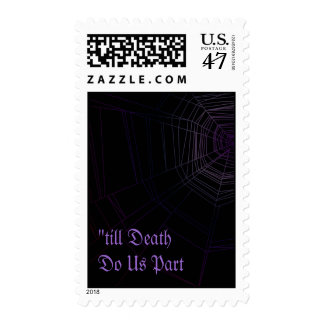Spiderweb Stamp