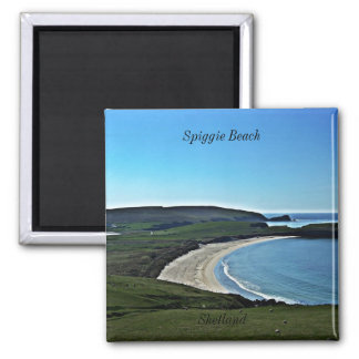 Spiggie Beach, Shetland Square Magnet