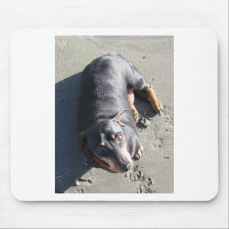 Spike, the Dachshund Mouse Pad