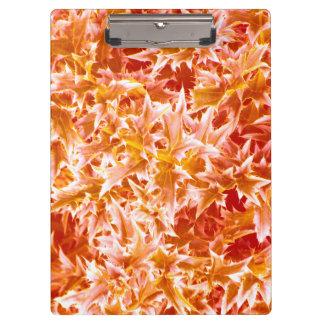 Spiked Leaves Clipboard - Orange