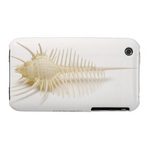 Spiked Murex shell Case-Mate iPhone 3 Case