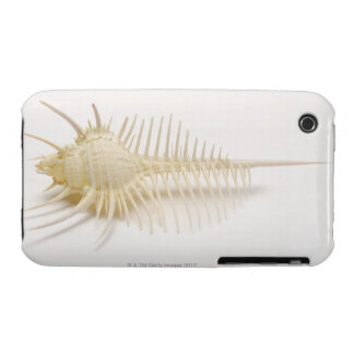 Spiked Murex shell Case-Mate iPhone 3 Cases