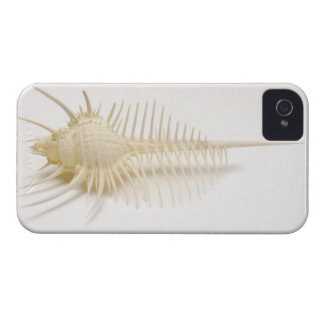 Spiked Murex shell Case-Mate iPhone 4 Case