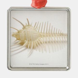Spiked Murex shell Christmas Ornament