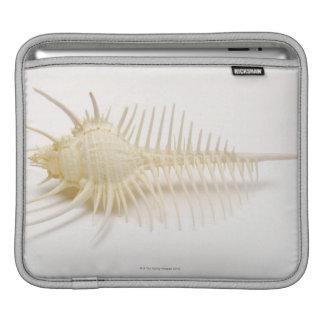 Spiked Murex shell iPad Sleeve