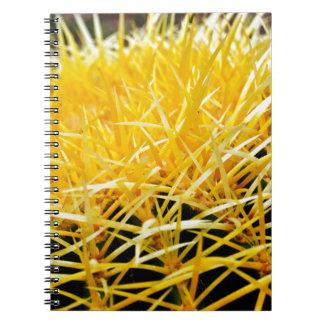 Spikes Notebooks