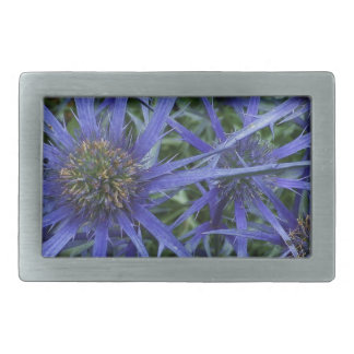 SPIKY BLUE SEA HOLLY FLOWER Pewter Belt Buckle