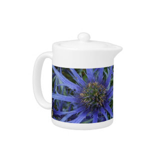 SPIKY BLUE SEA HOLLY FLOWER Teapot